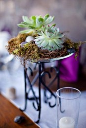 a bowl with succulents and hay on a tall stand is a very stylish and bold decoration or centerpiece