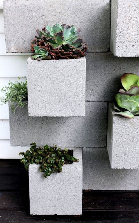How To Decorate With Succulents Examples