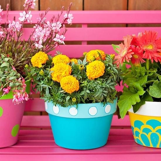 colorful printed planters with extra bold blooms will make your space cheerful and fun