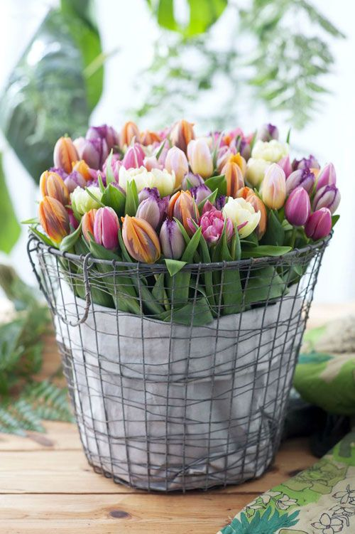 a wire basket with colorful tulips is a cool decoration or centerpiece that looks simple, cute and effortless