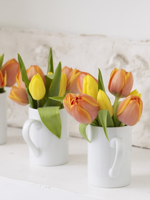 white teacups with colorful tulips are nice spring decorations with plenty of contrast