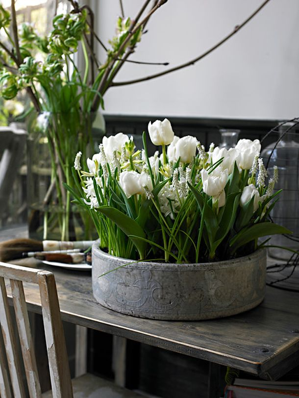 a concrete bowl with white bulbs and tulips is a bold spring decoration with a modern feel