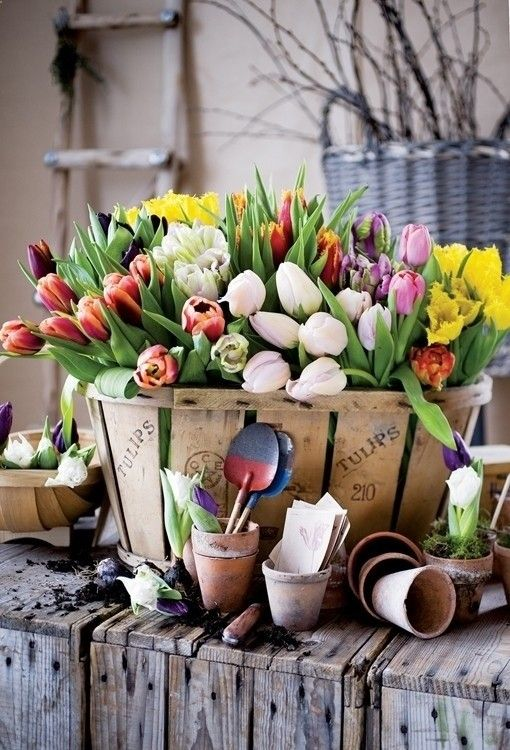 a wooden basket with colorful tulips will be a gorgeous rustic spring decoration for indoors and outdoors, too
