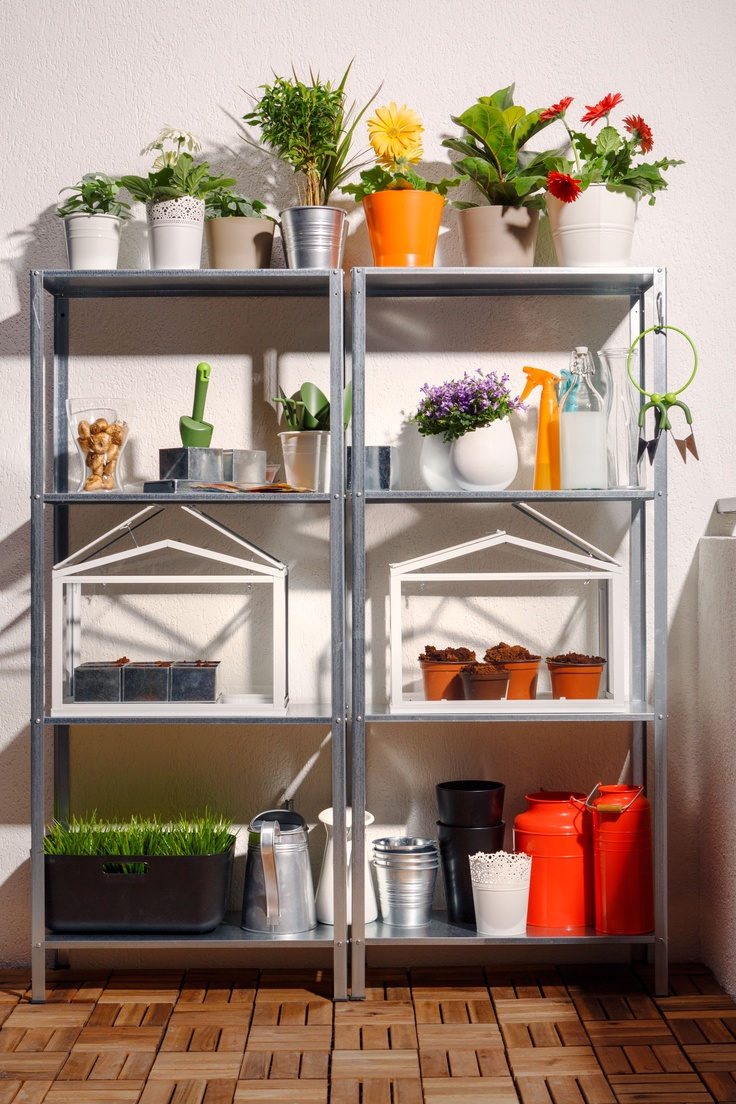 Hyllis shelves used as garden or shed storage units with pots, potted greenery and blooms, glasshouses and grass growing in a box