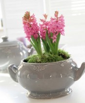 a grey sugar pot with pink hyacinths and moss is a cool vintage-inspired centerpiece or decoration for spring
