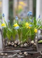 a creative spring decoration – a large glass vase with hay, fake eggs and feathers and blue hyacinths and yellow daffodils