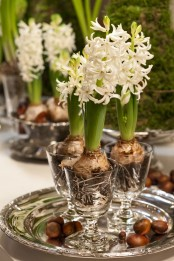 glasses with white hyacinths for a pretty and refined spring centerpiece placed on a silver tray