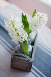 a wooden box with glass vases and white hyacinths for a rustic or farmhouse spring space