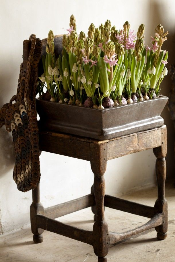 a dark stained wooden box with lots of pink and white hyacinths will be an amazing indoor or outdoor spring decoration