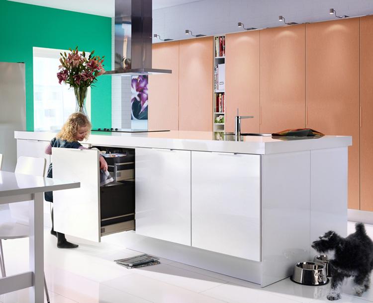 Ikea 2010 Kitchen Design Ideas