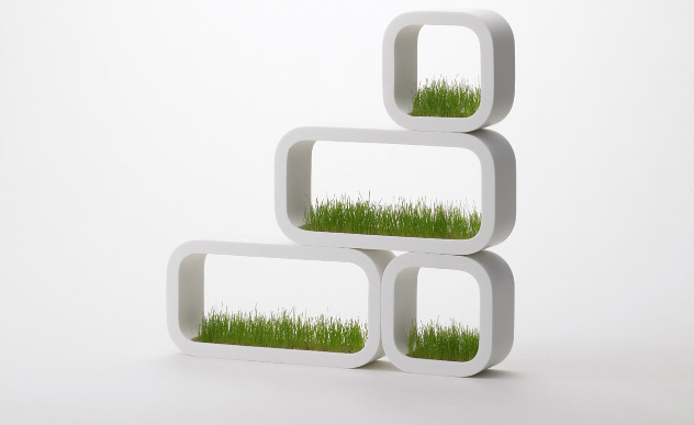 GrassShelf