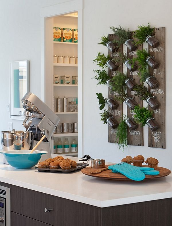 a wall herb garden is a cool idea to always have fresh herbs and bring a sprign feel to your space