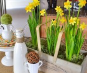 a vintage toolbox with yellow daffodils and moss make the kitchen feel more spring-like and fresh