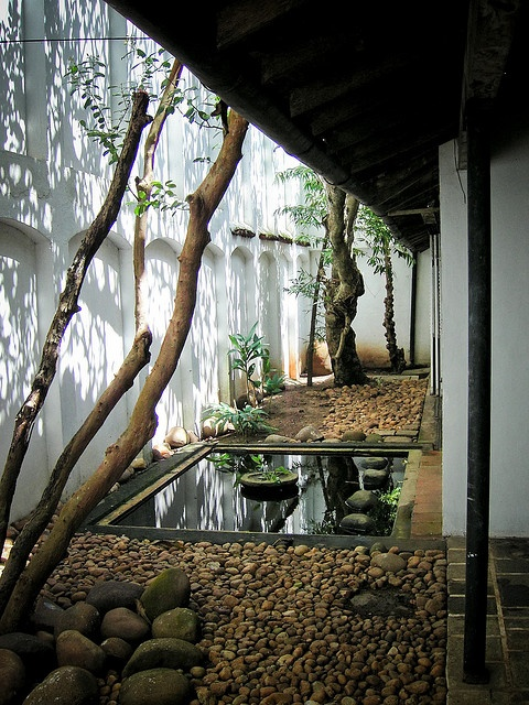 a beautiful and chic courtyard with pebbles, a couple of trees and greenery, rocks and a pong with a stone bowl in the center