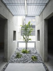 a minimalist Japanese courtyard with pebbles, greenery and a tree growing is a beautiful idea
