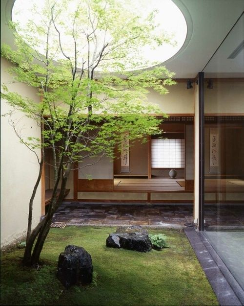 a small Japanese courtyard with grass, rocks, a tree and a skylight to let natural light in here will bring you relaxation