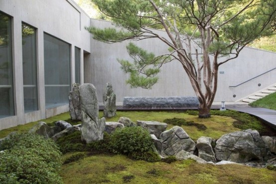 a Japanese garden with moss, greenery, rocks and a single tree in the center with much natural light