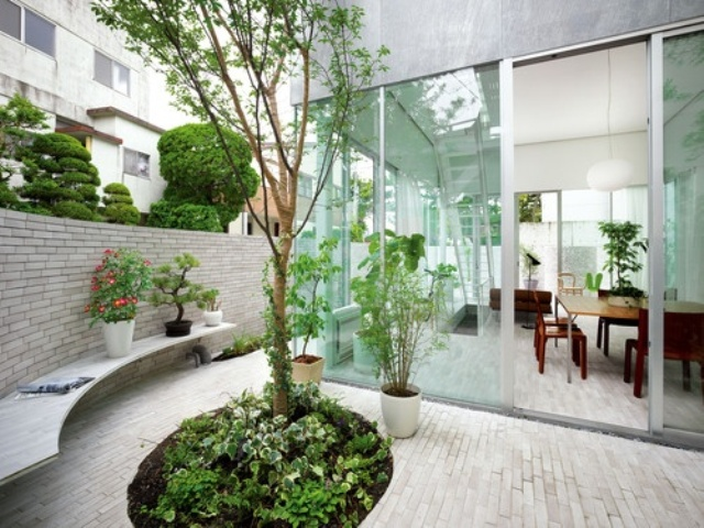 a minimalist Japanese inspired courtyard with a tree and greenery, a bench and some bricks on the ground