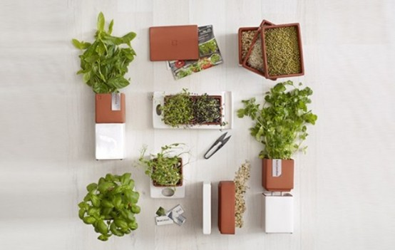 Original Accessories Collection For Kitchen Farming By Cult Design