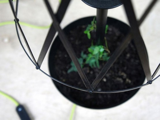 Lamp With A Potted Plant To Bring Green To Your Interior
