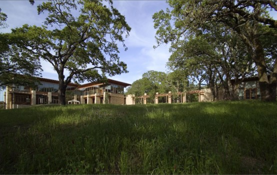 Large Residence With Vineyard Meaow And Oak Forest