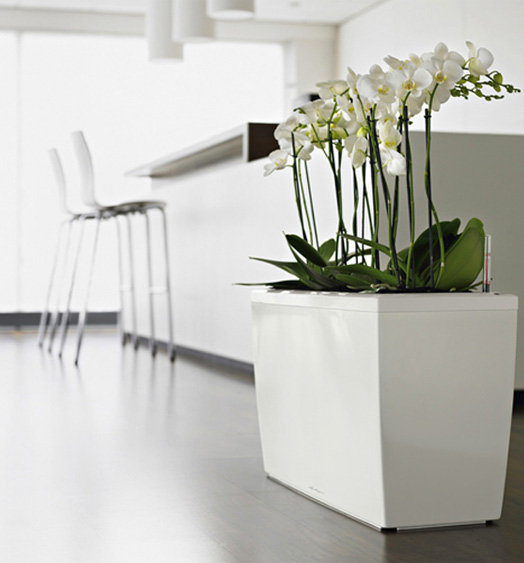 Lechuza sub irrigation planters with modern design digsdigs for Modern indoor plants