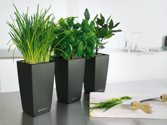 Lechuza sub irrigation planters with modern design digsdigs - Lechuza self watering planter ...