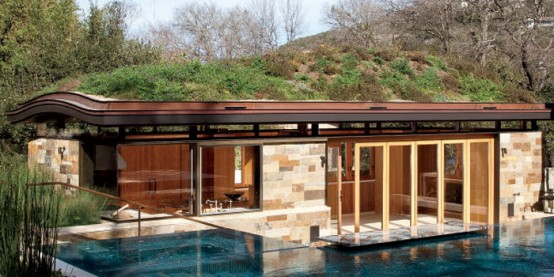 Living Roof Design: A Real Rooftop Oasis