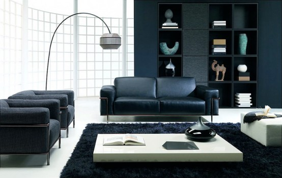 living room natuzzi frank
