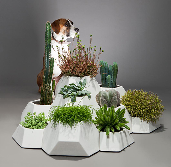 Ma-ce-ta Puzzle Planters For Compact Spaces