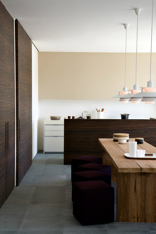 Masculine Dining Room Designs