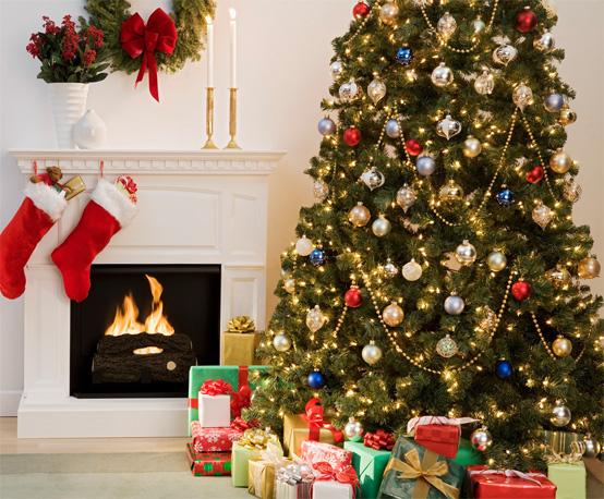 Merry Christmas Dear Readers!