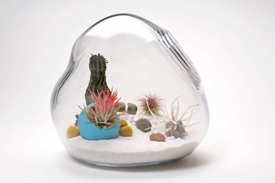 Hand-Blown Glass Mini Terrariums by Lítill