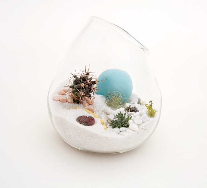 hand blown glass mini terrariums by l till digsdigs. Black Bedroom Furniture Sets. Home Design Ideas