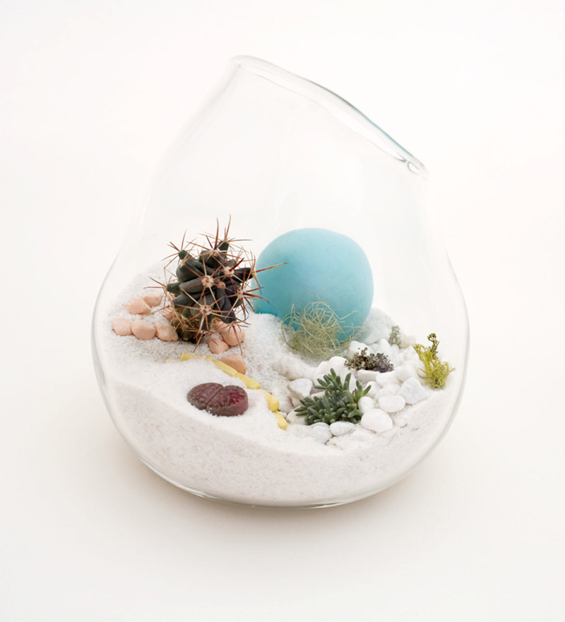 hand blown glass mini terrariums by l till digsdigs. Black Bedroom Furniture Sets. Home Design Ideas