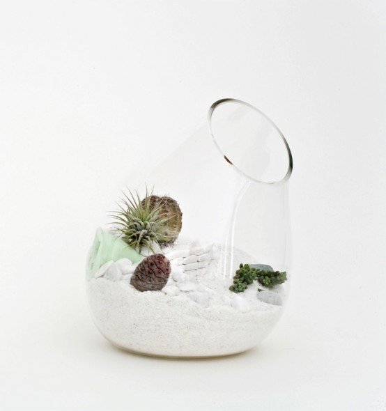 mini-terrarium-3-554x590.jpg