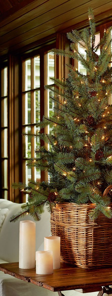A joyful cottage living large in small spaces christmas Big christmas tree small space