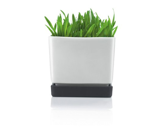 Minimalistic Black and White Flowerpots from Bodum and Sportmax