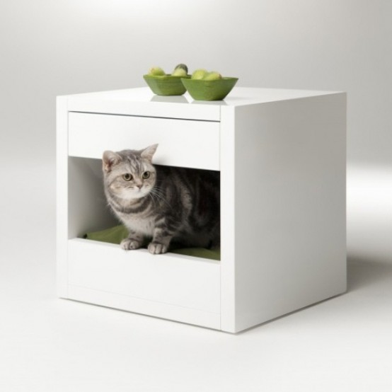 Minimalist Cat Shelter With Colorful Cushions