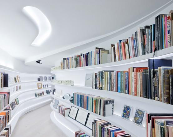 Minimalist Collectors Loft