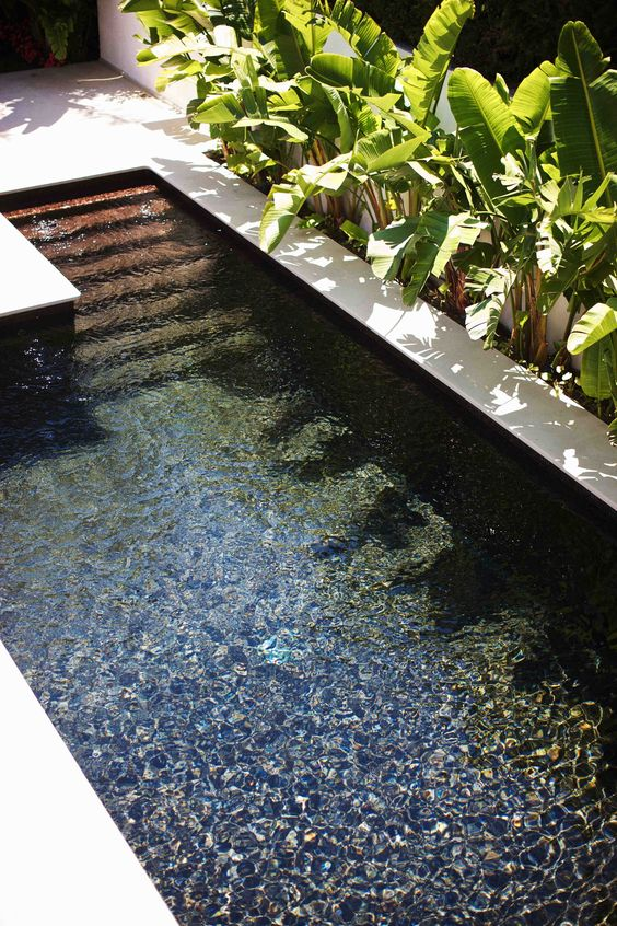 minimalist outdoor plunge pool with a white edge