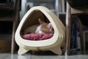 Modern And Ergonomic Fish Born Cat House