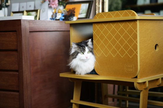 Modern Cozy Frank Cat House With Eco-Friendly Design
