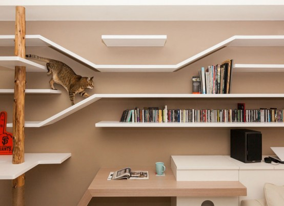 Modern Custom Shelving To Keep The Cat Happy