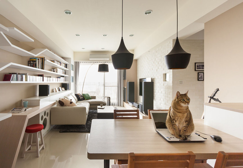 Picture Of modern custom shelving to keep the cat happy  4