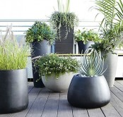 grey and black planters of various height and shapes will help you create an ultra-modern and chic backyard