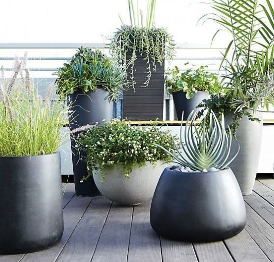 37 modern planters to make your outdoors stylish digsdigs for Zamioculcas exterieur