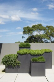 grey metal square planters of various heights look very minimalist and very chic at the same time