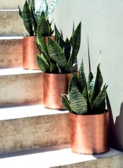 mini copper planters with succulents are perfect to line up the aisle or a path and they are sure to give a modern feel to your outdoors