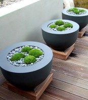 black bowl-like planters with wide edges, pebbles and moss look very bold, modern and edgy